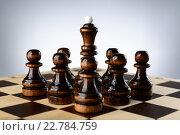 Купить «Черная шахматная королева окруженная пешками», фото № 22784759, снято 31 января 2016 г. (c) Рамиль Гибадуллин / Фотобанк Лори