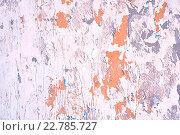Купить «Облупившаяся краска и штукатурка на бетонной стене», фото № 22785727, снято 3 мая 2016 г. (c) Зезелина Марина / Фотобанк Лори