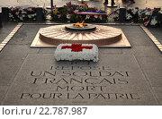 Купить «Могила Неизвестного Солдата (Tombe du Soldat inconnu) под сводами Триумфальной арки (L'arc de triomphe de l'Étoile), Париж, Франция», фото № 22787987, снято 3 июня 2015 г. (c) Дарья Кравченко / Фотобанк Лори