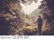 Купить «Hiker with hiking poles walking in a mountain forest», фото № 22815367, снято 23 июля 2014 г. (c) Andrejs Pidjass / Фотобанк Лори