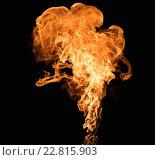 Купить «Burning flame on black background», фото № 22815903, снято 13 мая 2015 г. (c) Andrejs Pidjass / Фотобанк Лори