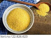 Купить «Millet seeds in bowl.», фото № 22826623, снято 7 марта 2016 г. (c) Tatjana Baibakova / Фотобанк Лори