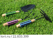 Купить «Садовый инструмент на траве», эксклюзивное фото № 22833399, снято 6 мая 2016 г. (c) Юрий Морозов / Фотобанк Лори