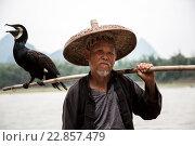 Старый рыбка готовится к рыблке традиционным для китая способом с помощью ручного баклана на фоне гор в провинции Гуанси (2013 год). Редакционное фото, фотограф Николай Винокуров / Фотобанк Лори