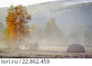 Стог сена в осеннем лесу. Стоковое фото, фотограф Игорь Аникин / Фотобанк Лори