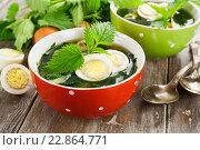 Купить «Суп из крапивы с яйцом», фото № 22864771, снято 16 мая 2016 г. (c) Надежда Мишкова / Фотобанк Лори