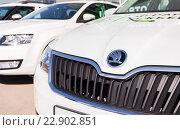 Купить «Автомобили Skoda стоят возле салона официального дилера», фото № 22902851, снято 14 мая 2016 г. (c) FotograFF / Фотобанк Лори
