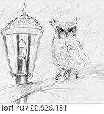 Купить «Сова и фонарь, рисунок карандашом», иллюстрация № 22926151 (c) Веснинов Янис / Фотобанк Лори