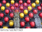 Цветные горшки для цветов на стене. Стоковое фото, фотограф Сергей Жинко / Фотобанк Лори