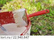 Купить «Кисть для побелки деревьев», эксклюзивное фото № 22940847, снято 4 мая 2016 г. (c) Юрий Морозов / Фотобанк Лори