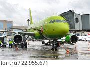 Купить «Предполетная подготовка Аэробуса A319 авиакомпании S7», фото № 22955671, снято 19 мая 2016 г. (c) Андрей Радченко / Фотобанк Лори