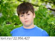Купить «Portrait of boy of about 12 years in Oak Park», фото № 22956427, снято 15 мая 2016 г. (c) Володина Ольга / Фотобанк Лори