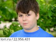 Купить «Portrait of boy of about 12 years in Oak Park», фото № 22956431, снято 15 мая 2016 г. (c) Володина Ольга / Фотобанк Лори