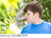 Купить «boy smelling a lilac flowers in park», фото № 22985975, снято 15 мая 2016 г. (c) Володина Ольга / Фотобанк Лори