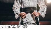 Купить «Composite image of fighter tightening karate belt», фото № 22991059, снято 18 августа 2019 г. (c) Wavebreak Media / Фотобанк Лори