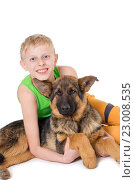 Купить «Boy and puppy shepherd dogs», фото № 23008535, снято 21 марта 2016 г. (c) Типляшина Евгения / Фотобанк Лори