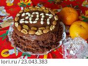 Купить «Подготовка к Новому 2017 году. Домашний новогодний торт», фото № 23043383, снято 6 июня 2016 г. (c) Виктория Катьянова / Фотобанк Лори
