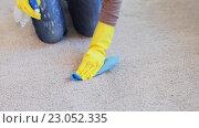 Купить «woman in gloves cleaning carpet or rug with rag», видеоролик № 23052335, снято 17 апреля 2016 г. (c) Syda Productions / Фотобанк Лори