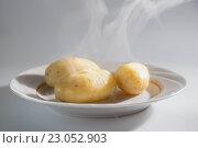 Варенный горячий картофель с паром. Стоковое фото, фотограф Колокольцева Людмила / Фотобанк Лори