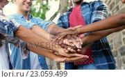 Купить «Young hipsters are joining hands and smiling », видеоролик № 23059499, снято 19 августа 2019 г. (c) Wavebreak Media / Фотобанк Лори