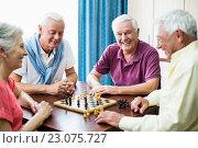 Купить «Seniors playing chess», фото № 23075727, снято 2 марта 2016 г. (c) Wavebreak Media / Фотобанк Лори