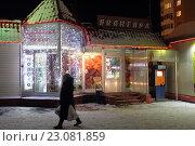 Купить «Балашиха, ярмарка Поле Чудес зимой», эксклюзивное фото № 23081859, снято 17 декабря 2015 г. (c) Дмитрий Неумоин / Фотобанк Лори