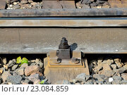Купить «Крепление рельсы к деревянной шпале», фото № 23084859, снято 1 мая 2016 г. (c) Сергей Трофименко / Фотобанк Лори