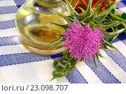 Купить «Цветок расторопши пятнистой», эксклюзивное фото № 23098707, снято 17 мая 2016 г. (c) Blekcat / Фотобанк Лори
