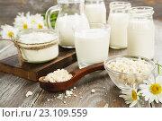 Свежие молочные продукты и ромашки на деревянном столе. Стоковое фото, фотограф Надежда Мишкова / Фотобанк Лори