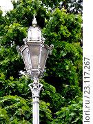 Купить «Иматра.Уличный фонарь», фото № 23117267, снято 4 июня 2016 г. (c) Владимир Кошарев / Фотобанк Лори
