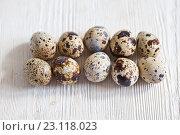 Купить «Перепелиные яйца на светлом деревянном фоне», фото № 23118023, снято 19 июня 2016 г. (c) Юлия Бочкарева / Фотобанк Лори