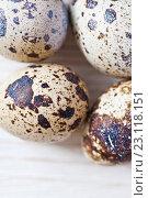 Купить «Перепелиные яйца на светлом деревянном фоне», фото № 23118151, снято 19 июня 2016 г. (c) Юлия Бочкарева / Фотобанк Лори