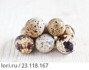 Купить «Перепелиные яйца на светлом деревянном фоне», фото № 23118167, снято 19 июня 2016 г. (c) Юлия Бочкарева / Фотобанк Лори
