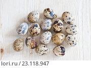 Купить «Перепелиные яйца на светлом деревянном фоне», фото № 23118947, снято 19 июня 2016 г. (c) Юлия Бочкарева / Фотобанк Лори