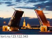 Купить «Петропавловский собор в створе разведенного Дворцового моста белой ночью. Санкт-Петербург», фото № 23122343, снято 19 июня 2016 г. (c) Виктор Карасев / Фотобанк Лори