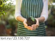 Купить «Female gardener holding sapling», фото № 23130727, снято 11 мая 2016 г. (c) Wavebreak Media / Фотобанк Лори
