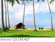 Купить «Old shack on the coast of Indian ocean.», фото № 23135427, снято 30 декабря 2015 г. (c) easy Fotostock / Фотобанк Лори