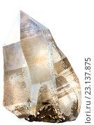 Купить «Дымчатый кварц  - природные кристаллы», фото № 23137875, снято 24 февраля 2016 г. (c) Татьяна Белова / Фотобанк Лори