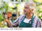 Купить «Happy male gardener examining sapling», фото № 23138631, снято 11 мая 2016 г. (c) Wavebreak Media / Фотобанк Лори