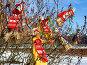 """Соломенные """"Масленичные"""" куклы, развешанные на ветках деревьев, эксклюзивное фото № 23151571, снято 13 марта 2016 г. (c) Вячеслав Палес / Фотобанк Лори"""