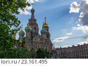 Храм Спаса-на-Крови (Санкт-Петербург) (2014 год). Стоковое фото, фотограф Серов Николай / Фотобанк Лори