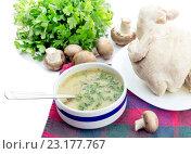 Купить «Грибной суп и варенная курица на белом фоне», фото № 23177767, снято 28 июня 2016 г. (c) Татьяна Ляпи / Фотобанк Лори