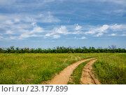 Купить «Поворот грунтовой дороги под небом с ритмичными облаками», фото № 23177899, снято 22 мая 2016 г. (c) Борис Панасюк / Фотобанк Лори