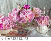 Крупные цветы розовых пионов на столе. Стоковое фото, фотограф Елена Лобовикова / Фотобанк Лори