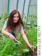 Купить «Девушка - садовод улыбается и пропалывает морковь на грядке в теплице на дачном участке», фото № 23182711, снято 19 июня 2016 г. (c) Максим Мицун / Фотобанк Лори
