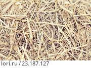 Купить «dry grass or hay texture», фото № 23187127, снято 7 февраля 2015 г. (c) Syda Productions / Фотобанк Лори