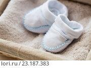 Купить «close up of baby bootees for newborn boy in basket», фото № 23187383, снято 25 мая 2016 г. (c) Syda Productions / Фотобанк Лори