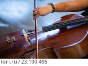Купить «Cellist», фото № 23190495, снято 8 апреля 2011 г. (c) age Fotostock / Фотобанк Лори