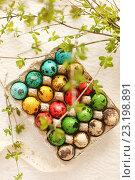 Купить «Перепелиные яйца. Весенний натюрморт», фото № 23198891, снято 30 апреля 2016 г. (c) Екатерина Тарасенкова / Фотобанк Лори