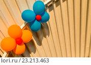 Шарики в виде цветов на фоне стены. Стоковое фото, фотограф Sergey Borisov / Фотобанк Лори